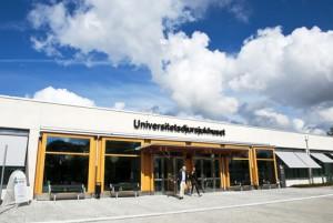Universitetsdjursjukhuset web